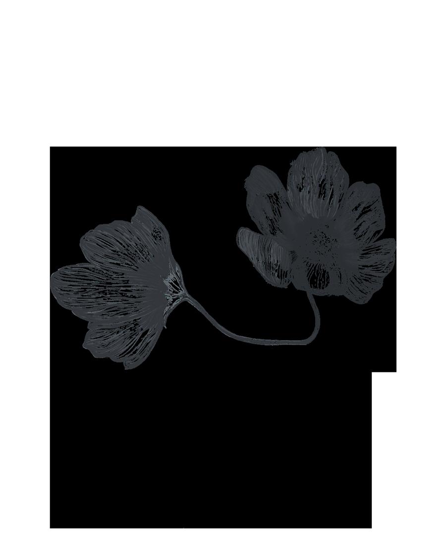 dosflowers